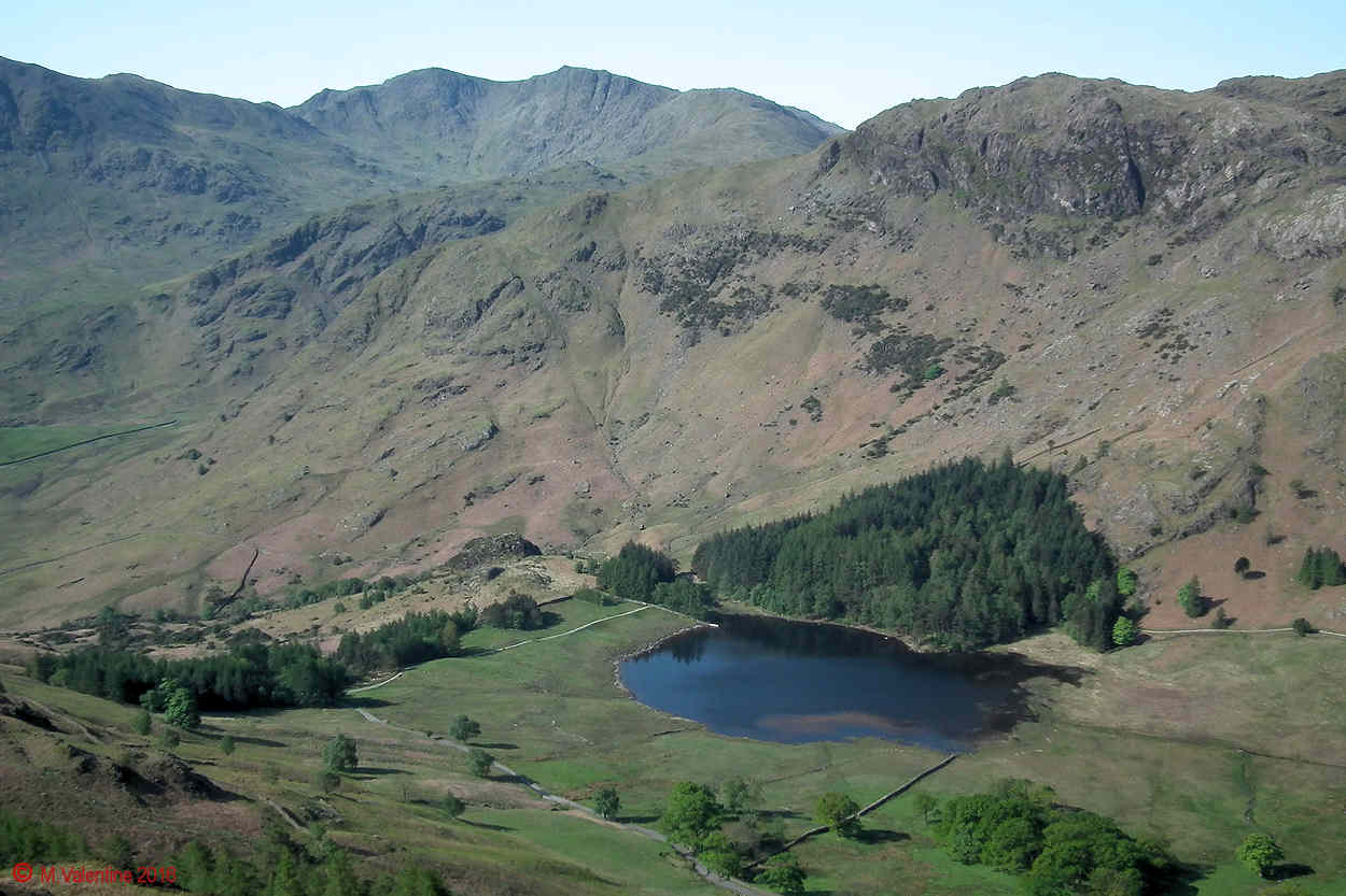 06 - Looking down to Blea Tarn from Lingmoor Fell summit area..jpg