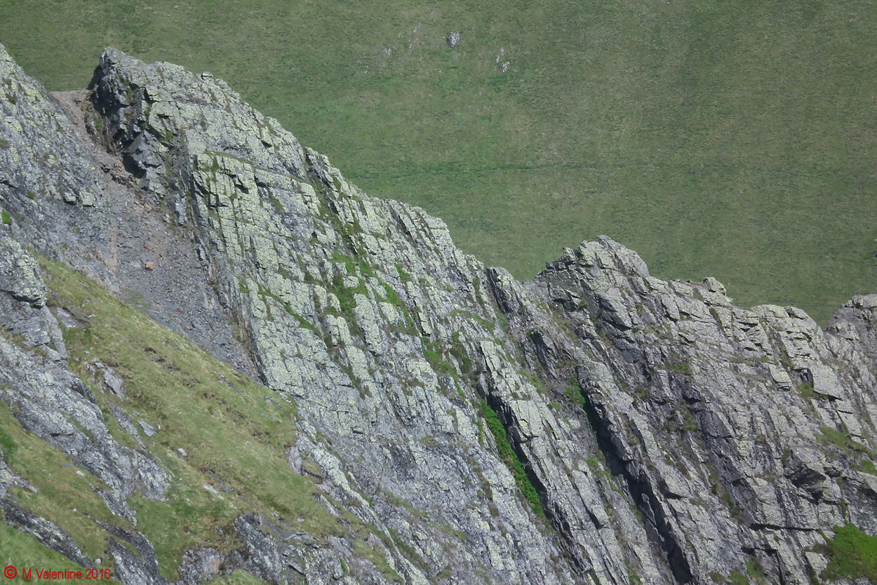 10 - Sharp Edge Close-up.jpg