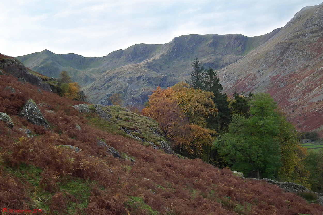 01 Looking up Grisedale to Nethermost & Dollywaggon Pikes.jpg