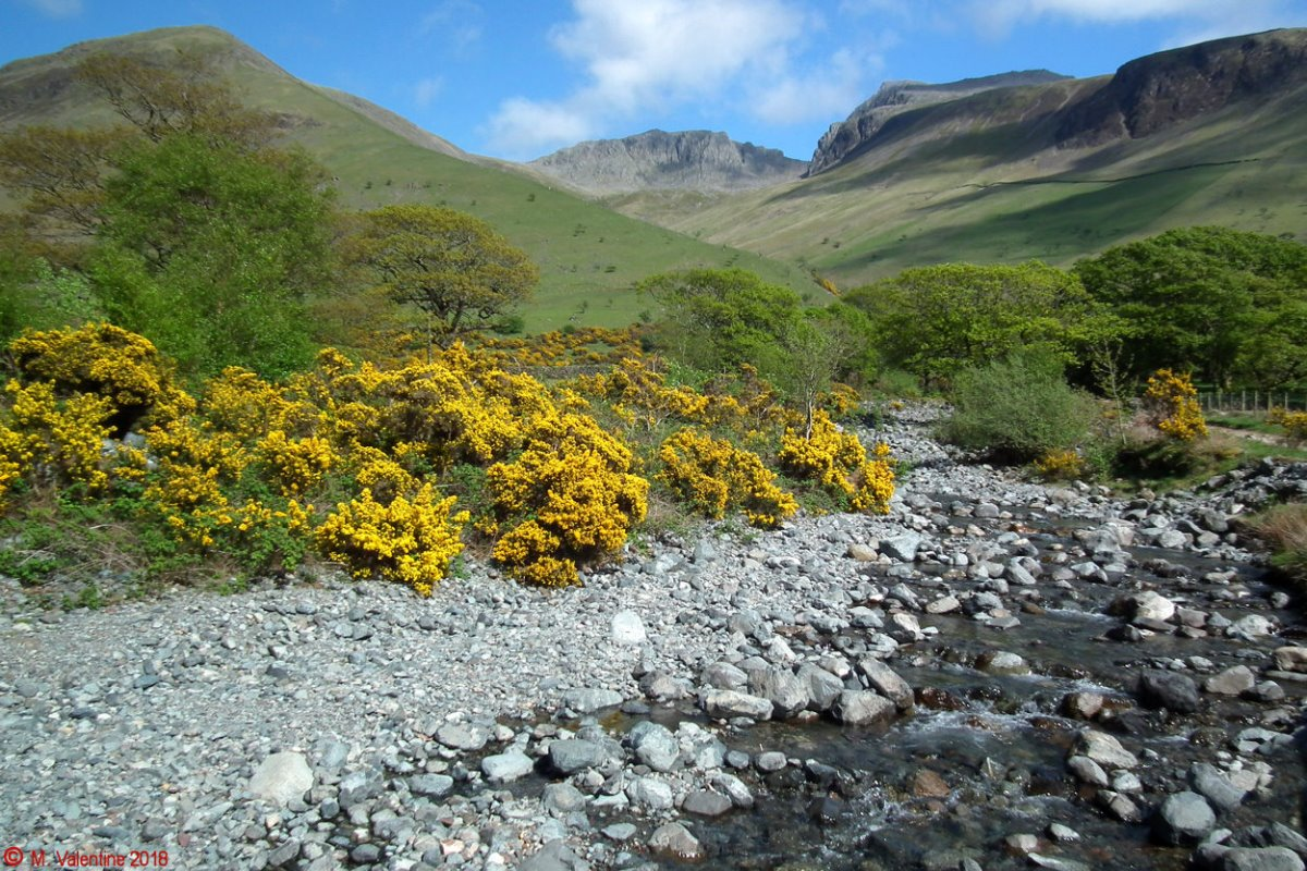 41 Scafells from Lingmell Gill.jpg